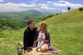 Banner Elk Winery & Villa Romantic Picnic