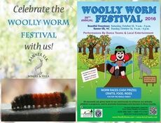 Celebrate the Annual Woolly Worm Festival with us