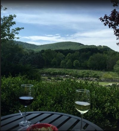 TripAdvisor testimonial photo of Banner Elk Winery & Villa