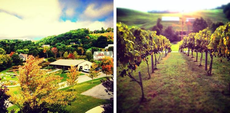 The Beauty of Banner Elk   Winery & Villa in Fall