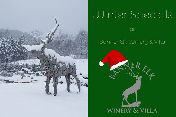 Winter Specials at Banner Elk Winery and Villa