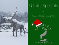 Winter Specials at Banner Elk Winery and Villa!!