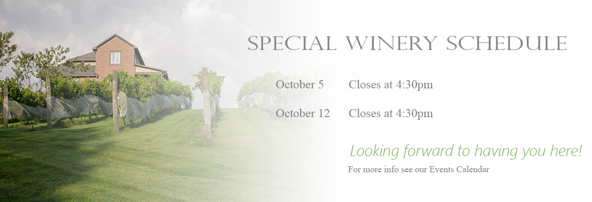 Banner Elk Winery & Villa - Closing Early